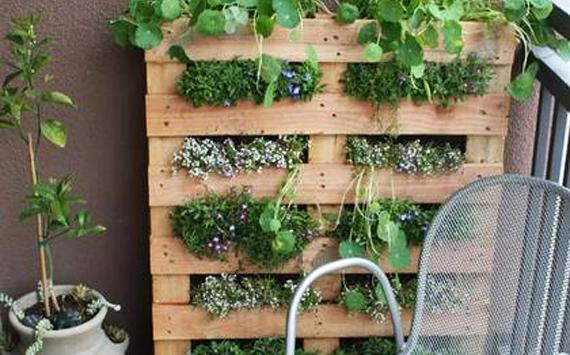 Tuinieren Op Balkon : Verticaal tuinieren girugten